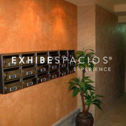 PRESUPUESTO de pintura en Barcelona estuco de CAL en vestíbulo