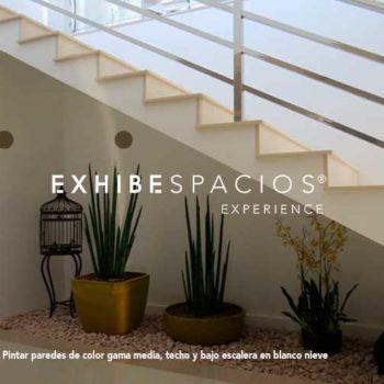 pintura y decoración de vestíbulo y escalera comunitaria en Barcelona decoración de portales