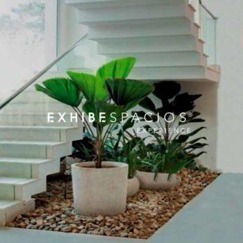 pintura y decoración de vestíbulo y escalera comunitaria en Barcelona con plantas
